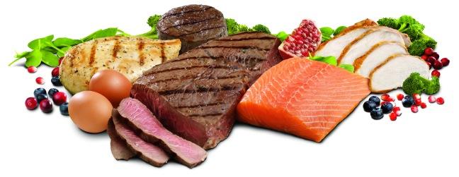 protein-foods.jpg